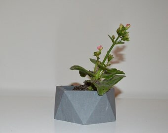 Charcoal Grey Concrete Succulent Planter, Geometric Concrete Planter, Housewarming Gift, Gifts for Her, Garden
