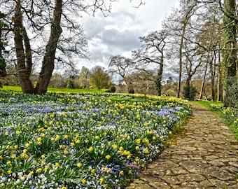 Walk through Spring #2