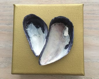 "4""x4"" Mussel shells canvas - solid"
