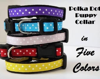 Puppy Dog Collar -Small Dog Collar - Polka Dot Dog Collar - Boy or Girl Dog Collar - Tiny Dog Collar