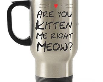 Are You Kitten Me Right Meow? Stainless Steel Travel Insulated Tumblers Mug