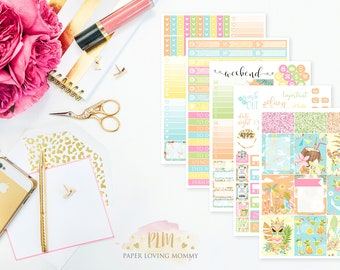 Cabana Twist Weekly Kit | Planner Stickers designed for use with the Erin Condren Life Planner