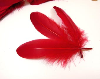 10 Wine red feathers - Red quills - Burgundy red feathers for crafts - Real feathers red - Loose burgundy feathers. UK Seller