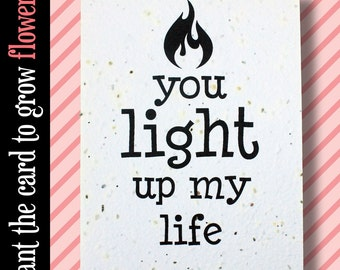 """GROWS WILDFLOWERS! - """"You light up my life"""" - Plant the Card - 100% recycled - #FR031"""