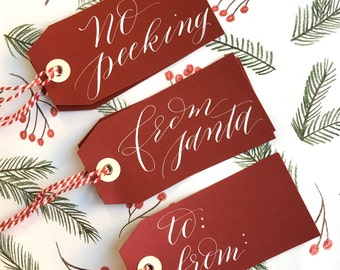 Red Shimmer Holiday Calligraphy Hang Gift Tag Assortment (10 pack)
