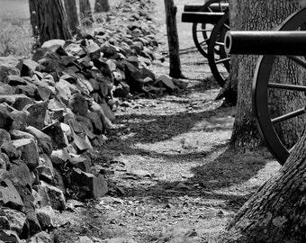 Cannons Along Confederate Avenue / Gettysburg - Photograph