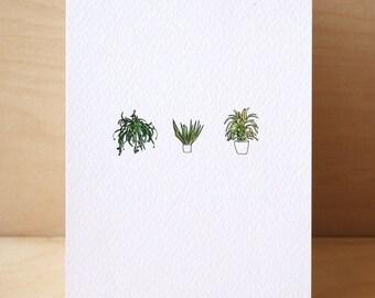 3# House Plants Card