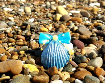Seashell favor box in blue and silver