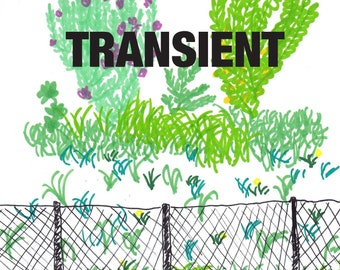 TRANSIENT issue 5