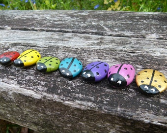 Hand-painted Ladybug Pebble, Choose your Colour, Ladybird Pebble