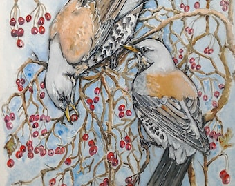 Fieldfare art thrush wildlife bird art original watercolour painting, Winter Thrushes