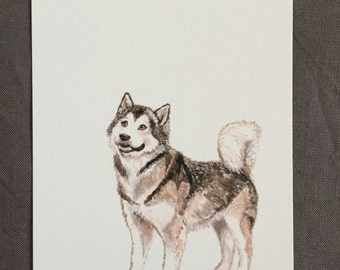 Illustrated dog postcard Alaskan Malamute