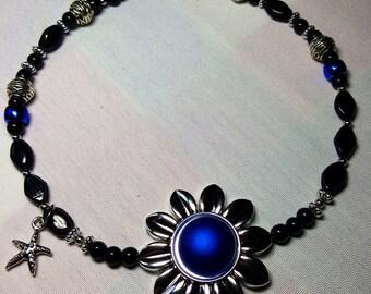Blue echinacea