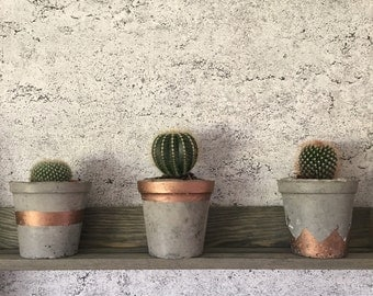 Concrete Planter and Decoration Pots