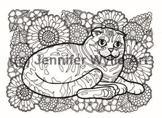 Scottish Fold Cat Colouring Page Coloring Book Printable