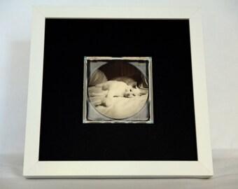 Unique Polaroid - Mr. Brezel, The Cat