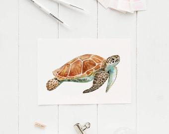 Sea Turtle Watercolour Illustration