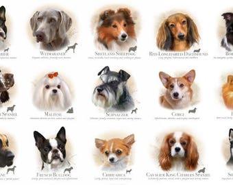 "Dogs of many breeds,7x8"" squares, Elizabeth Studio 1313 ,24"" panel"