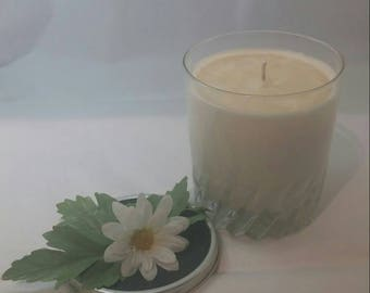 Dragon's Blood - Dragon's Blood Candle - Jelly Jar Candle - Soy Wax Candle - Scented Candle - Hand Poured Candle - Great Gift