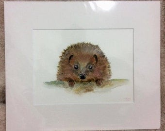 """Hedgy 12"""" x 10"""" Original watercolour painting"""