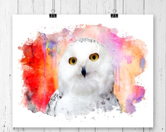 Owl 6  Watercolor  Fine  Art Print, Poster, Wall Art, Home Decor, Kids Wall Art, Play Room Wall Art, Wall Decor