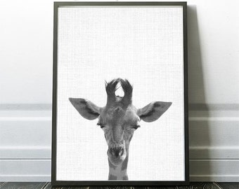 giraffe nursery art, giraffe art print, nursery print, giraffe Print,Kids room art, playroom decor, Giraffe,