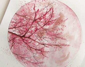 Original Watercolour Painting - Artwork, Home Decor, Blossom