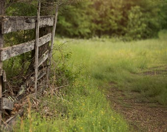 Set of 2 Old Wooden Fence with Flowers, Path, Tall Grass with light leak digital background/ digital backdrop / overlay