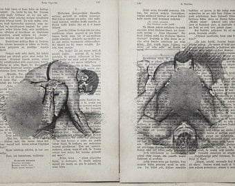 Erotic Gay poster 2 pages / Muscle man love / Printing Antique Latvian book  decor interior picture ART erotic