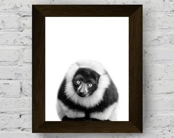 lemur print, black and white animal wall art, kids room poster printable artwork, lemur animal print for nursery, instant digital download