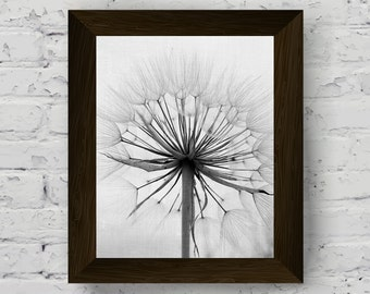 dandelion print, black and white nature wall art, flower photography, modern large poster, printable artwork, instant digital download