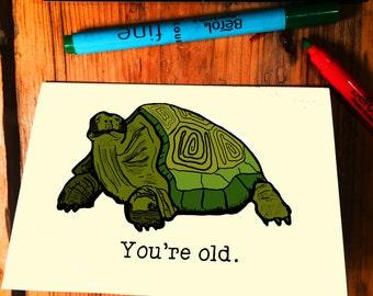 Old Tortoise
