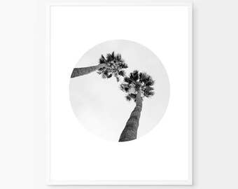 Black Palm Prints, California Palm Tree, Palm Leaf Print, Circle Print, Black and white, Minimalism art, Black Palm Tree, Nature Prints,