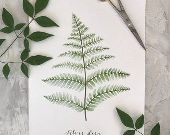 Silver Fern Print, Watercolor Print, Watercolor Fern Print, Watercolor Art, Botanical Print