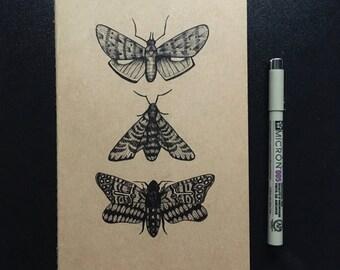 Moths Moleskine A5 Lined Notebook