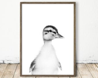 Baby Duck Print, Duck Print, Cute Duck Art, Duckling Print, Farm Animal Print, Baby Animal Decor, Printable Nursery Art, Modern Animal Print