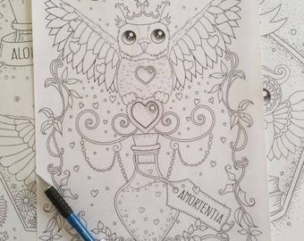 Harry Potter Printable Coloring Page Amortentia Owl