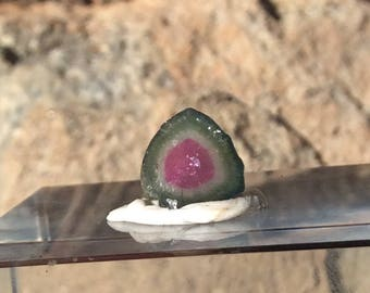 3.5 ct watermelon tourmaline slice from Kunar,Afghanistan B22