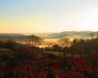 Morning blanket of fog....
