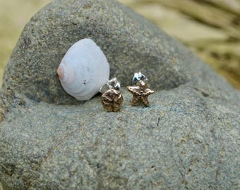Minature Starfish & Sand Dollar Earrings