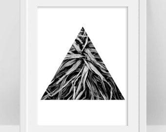 Nature Photography, Botanical Print, Botanical Photography, Black and White Decor, Triangle Art Print, Geometric Print, Minimalist Poster