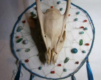 Muntjack Deer Skull Dream Catcher