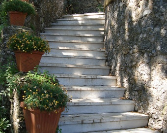 Photograph Portofino Steps - variety of print sizes available