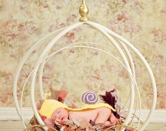 Newborn Digital backdrop, floral carriage, newborn digital background, floral background, yellow studio background