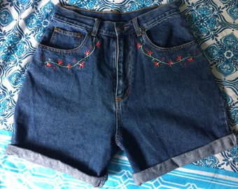 Blue Ridge VINTAGE Embroidered 90's shorts!