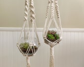 Macrame Plant Hanger (Listing is for one) / Made to Order / Specify Length