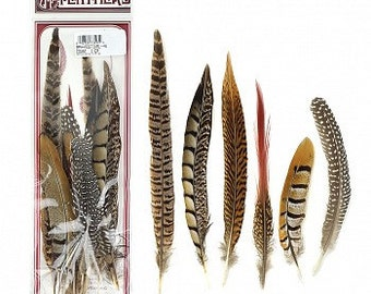 Assortment of Natural Feathers - 12 Piece Festival Mix