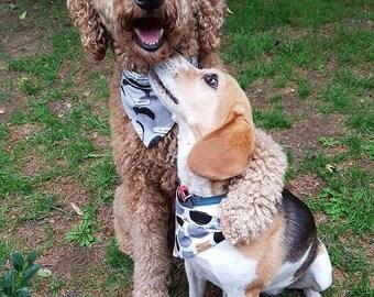 Dog and Cat Bandanas