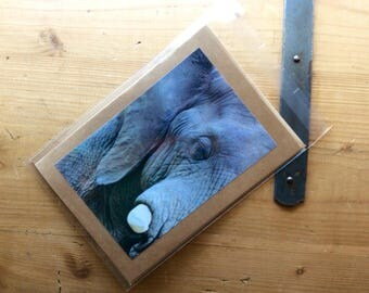Handmade Card with Image of an Elephant