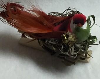 Birdclip (#014)